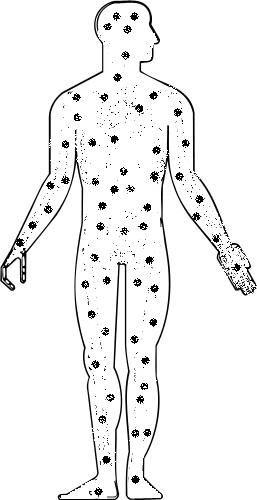 наркотики в жировых тканях